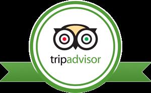 tripadvisor the savvy traveler